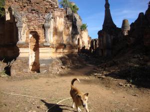 Shwe Inn Thein
