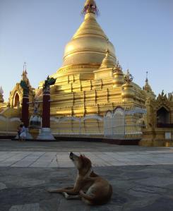 stupa scratch