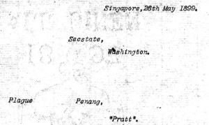 penang telegram