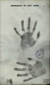 Lena Nau hand