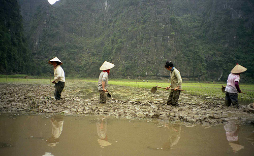 Vietnam1995 VN-28-35
